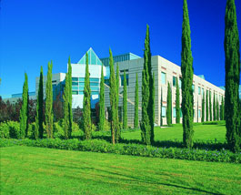 Stanford-Research-Park-Cyprus-trees-cmyk_lres_web